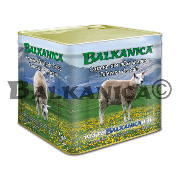 7 KG SHEEP'S MILK CHEESE CANISTER BALKANICA